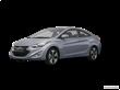 2013 Hyundai Elantra  [VIN:KMHDH6AE9DU017462]