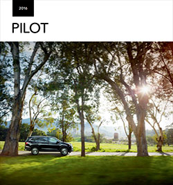 2016 Pilot Brochure