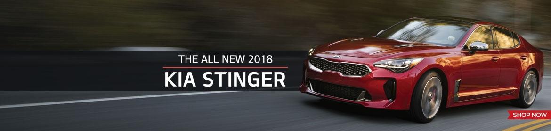 The All New Kia Stinger!
