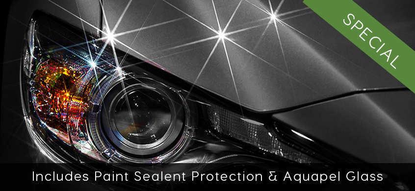 Includes Paint Sealent Protection & Aquapel Glass