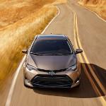 2019 Toyota Corolla in cornfields