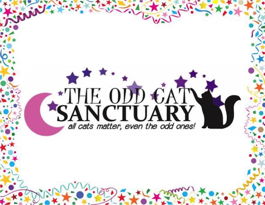 The Odd Cat Sanctuary